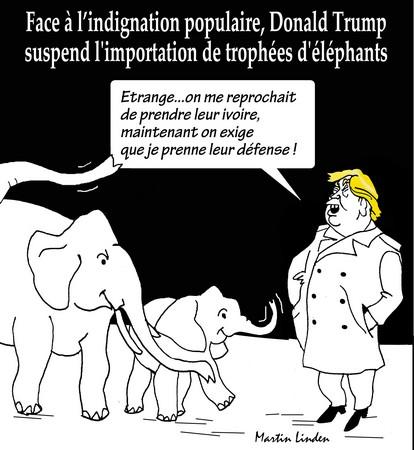 Trump et les éléphants